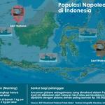 Sumber Daya Genetik di Perairan Indonesia Rawan Dicuri