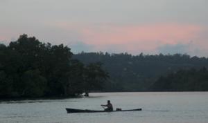 Dampak Sawit di Hutan Halmahera