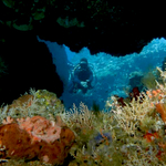 Deretan Spot Diving yang Wajib Dikunjungi di Ternate