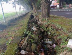 Akar Pohon Merusak Drainase Juga Jadi Penyebab Genangan Air di Ternate