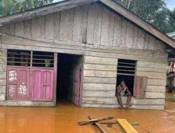 Video Banjir di Wilayah Lingkar Tambang Halmahera Tengah